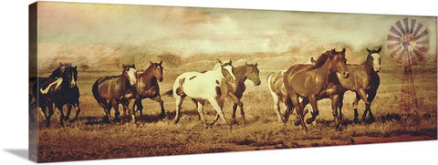 Wild Horses and Windmills Canvas Print