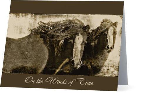 Winds of Time Note Cards and Greeting Cards (25 Pack)