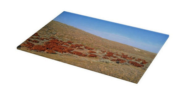 Wyoming Reds Cutting Board