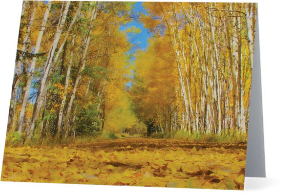 Yellow Leaf Road Note Cards and Greeting Cards (25 Pack)