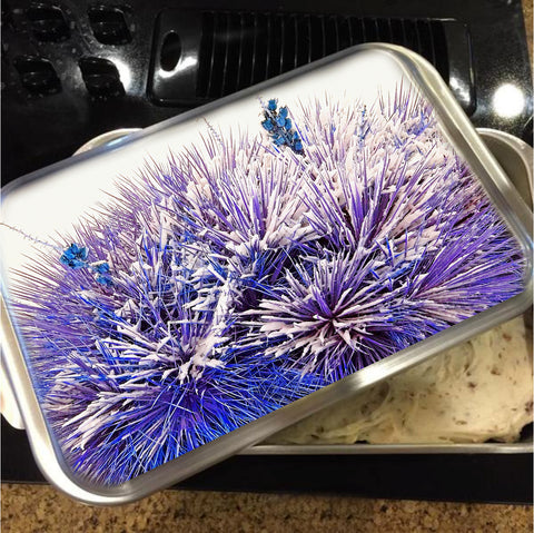 Winter Yucca in Blue Cake Pan with Lid