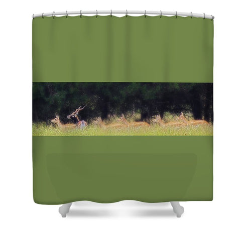 A Buck and a Show Shower Curtain