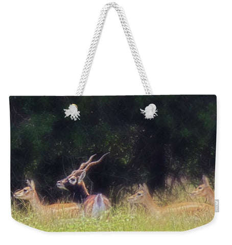 A Buck and a Show Weekender Tote bag