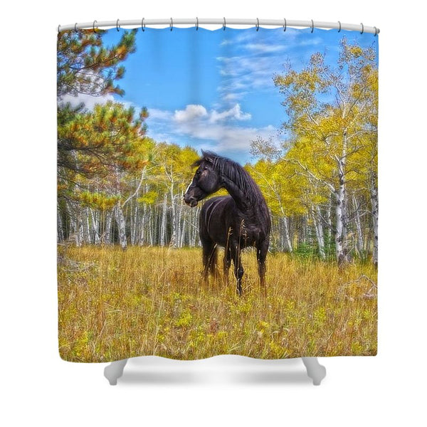 Aspen Gold in Black and White Shower Curtain