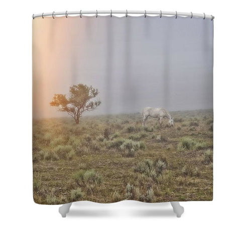Beggar in the Mist Shower Curtain