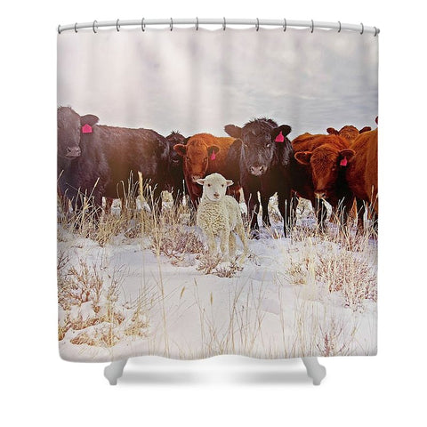 Behold! Shower Curtain