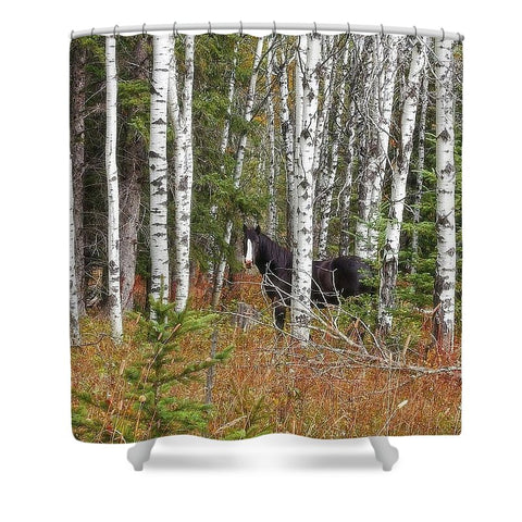 Black And White In Aspen Shower Curtain