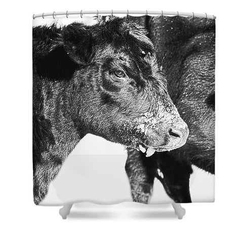 Black And White On Angus Shower Curtain