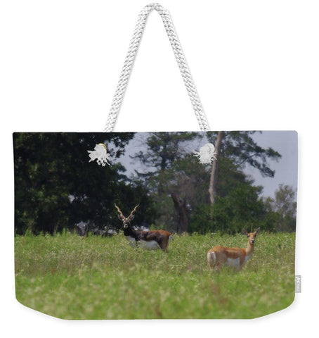 Black Buck and Doe Weekender Tote bag