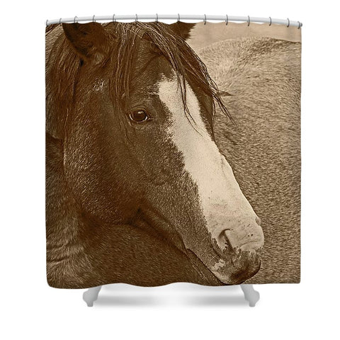 Blaze N Gray Shower Curtain