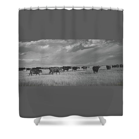 Blazing the Afternoon Trails Shower Curtain