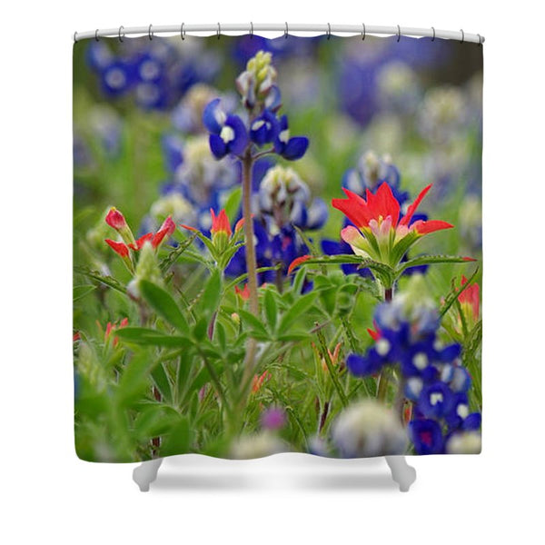 Blue Bonnets And A Paintbrush Shower Curtain
