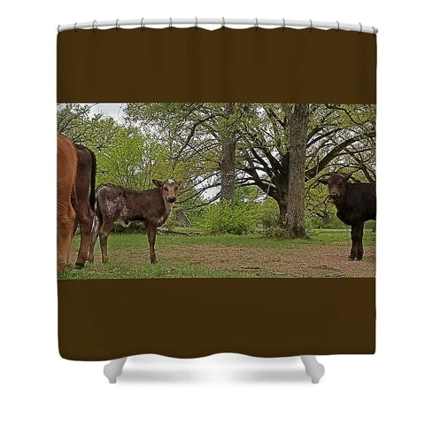 Bookends and Ends Shower Curtain