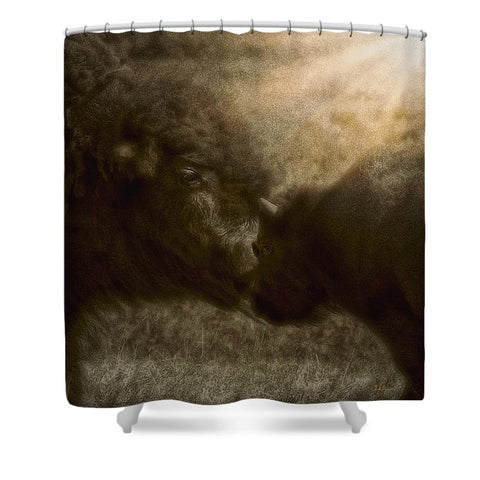 Buffalo Love Shower Curtain
