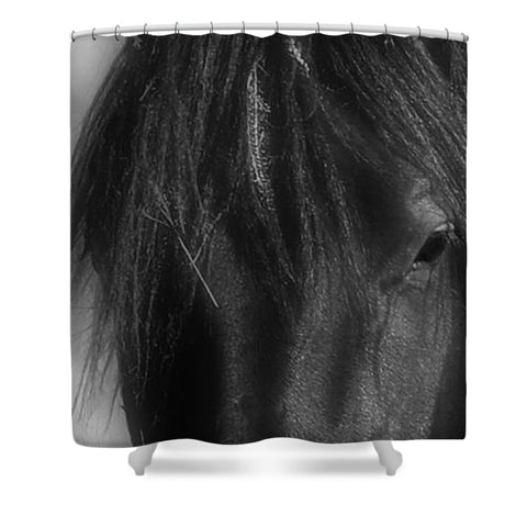 Burgundy in Black Shower Curtain