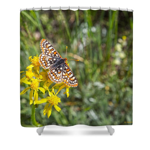 Butterfly in Aspen Shower Curtain