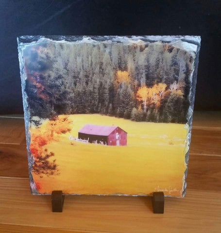"8""x8"" Slate Rock Fine Art ""South Dakota Meadow"""