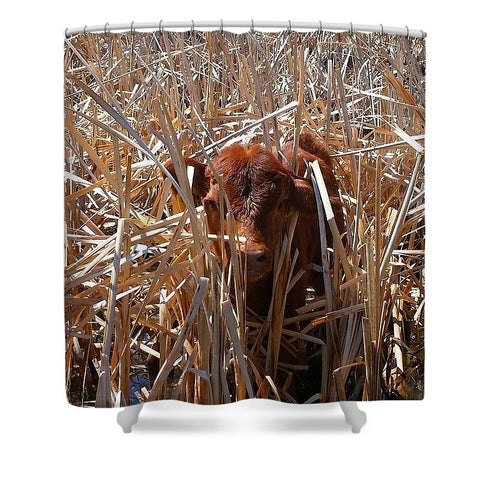 Calftails Cattails Shower Curtain