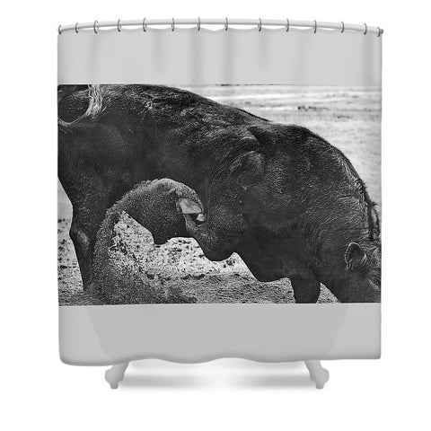 Curl and Wave Shower Curtain