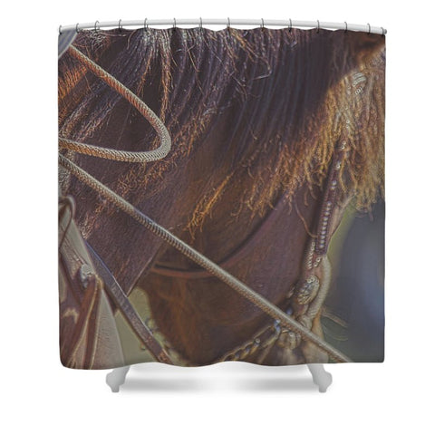 Daly Hold Shower Curtain