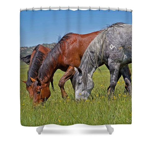 Grass Grazing Time Shower Curtain