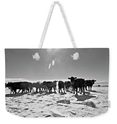 Heifers in the Snow Weekender Tote bag