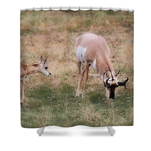Hey Dad Shower Curtain