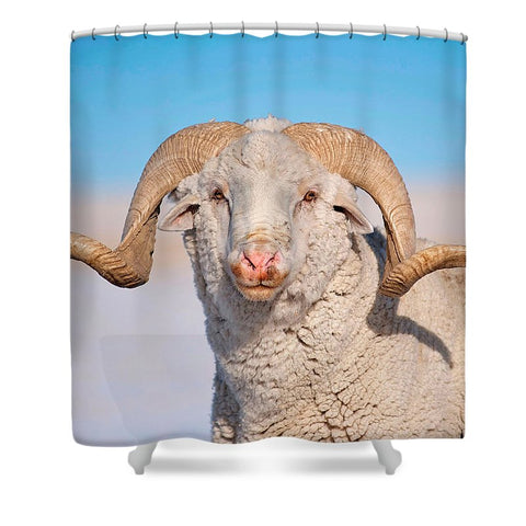 In Charge Shower Curtain