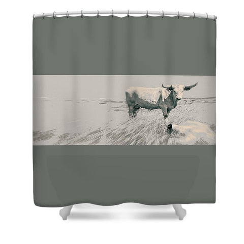 In the Still of the Grey Shower Curtain