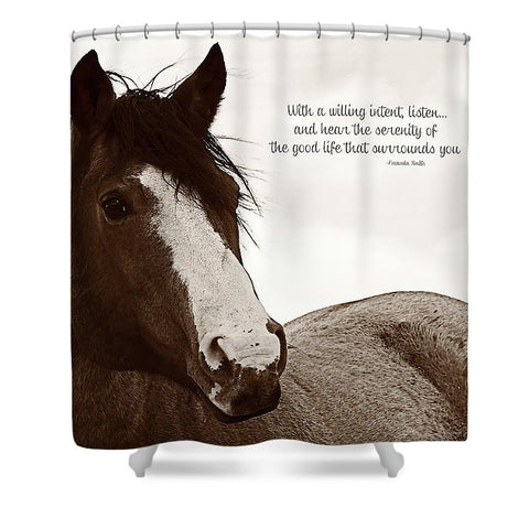 Inquisition Eyes and Ears Shower Curtain