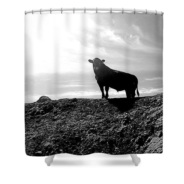 King of the Hill Shower Curtain