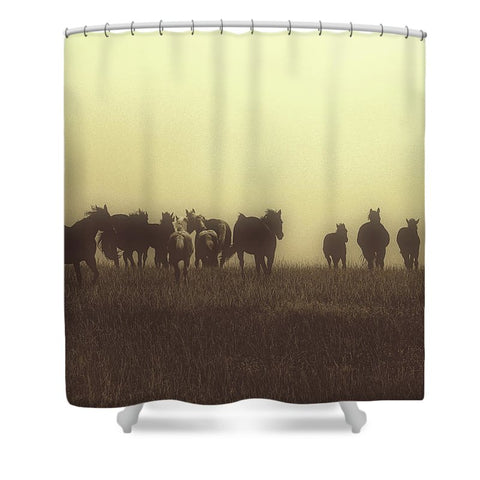 Last Run at Dusk Shower Curtain