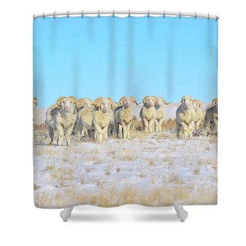 Line Em Up Rams Shower Curtain