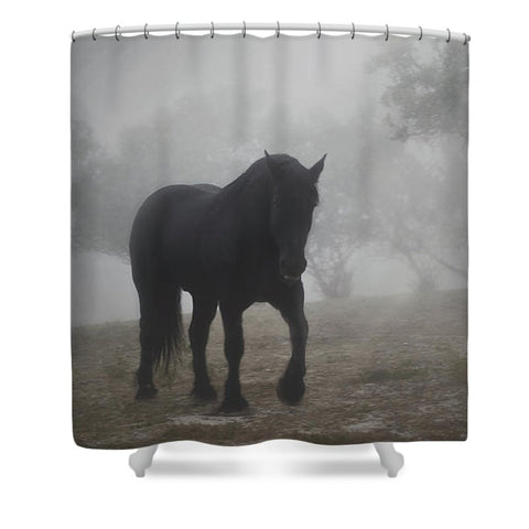 Medieval in the Mist Shower Curtain