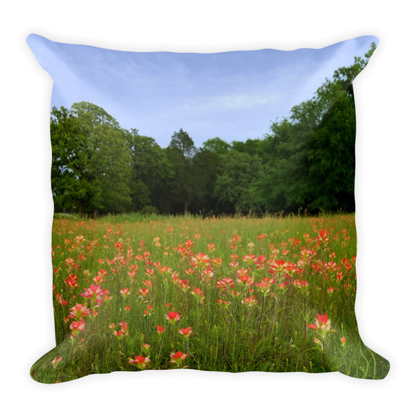 A Pocket Full of Paintbrush Throw Pillow