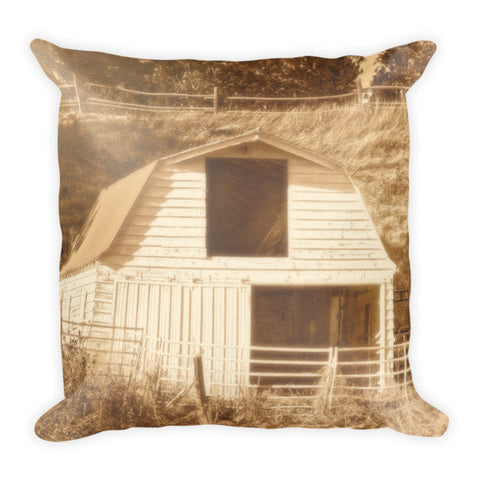 Sunny Daze Barn Throw Pillow