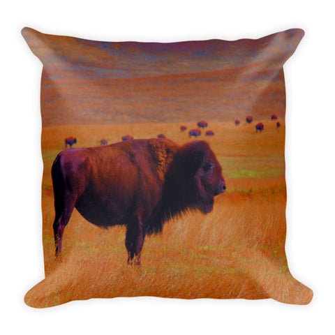 Sunrise Watch Throw Pillow