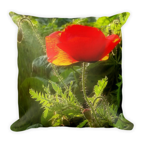 Red Poppy at Sunset Throw Pillow