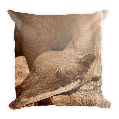 Sunlight and Grace Throw Pillow