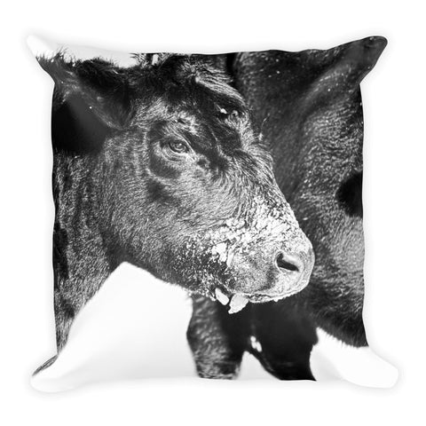 Black and White on Angus Throw Pillow