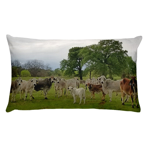 Texas Prairie Brahmans Rectangular Pillow