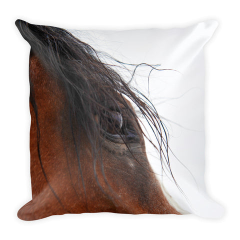 Whip's Eye Throw Pillow