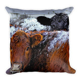 Peek a Boo Heifers Throw Pillow