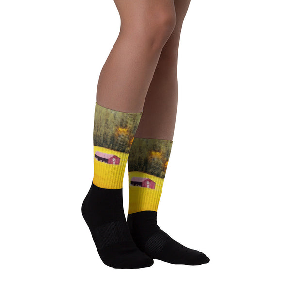 Fall on a South Dakota Meadow - Black foot socks