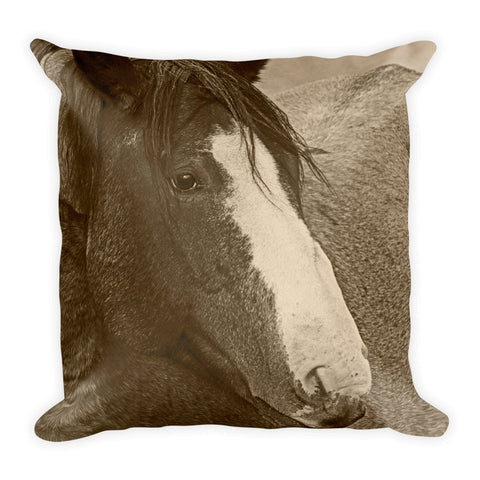 Blaze N Gray Throw Pillow