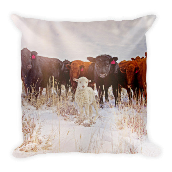 Behold! Throw Pillow