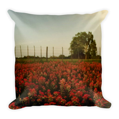 The Red Paint of Texas Throw Pillow