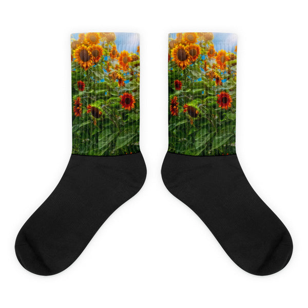 Sunflower Pack - Black foot socks