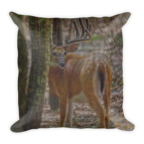 Whitetail Buck in Woods Throw Pillow