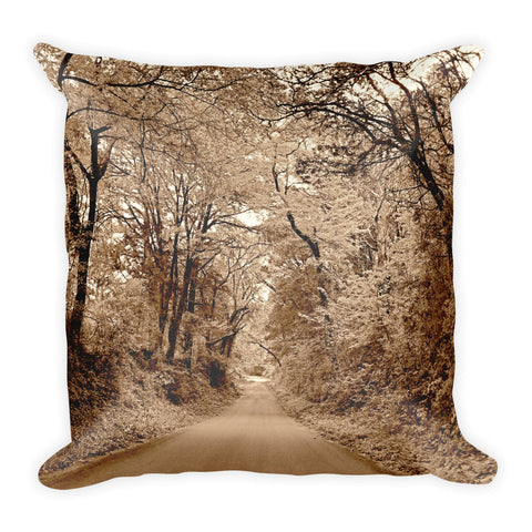Texas Road Throw Pillow